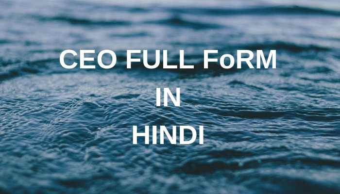CEO Full From In Hindi